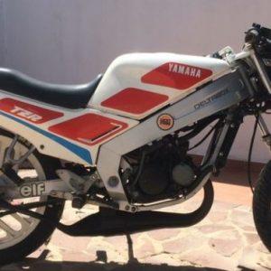 TZR80 89