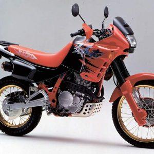 DOMINATOR 650 90
